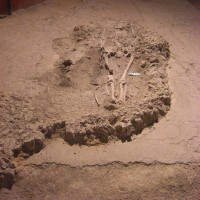 Fig. 2. Tomb 175. This burial cuts the Late Imperial floor. If the anthropological remains will be deemed well preserved, this skeleton will be analyzed with radiocarbon method